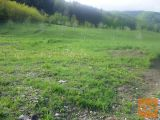 Ruše Bistrica ob Dravi Zazidljiva 660 m2