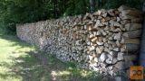 Suha bukova drva