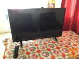 TV    80.0  cm