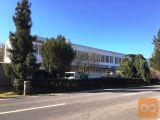 Nova Gorica Rožna Dolina pisarna 60,43 m2